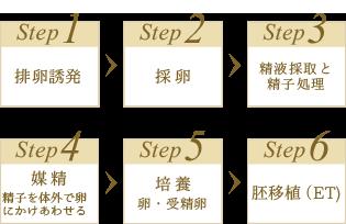 体外受精のステップ図